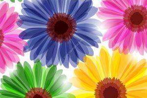 tranh 3d hoa flowers