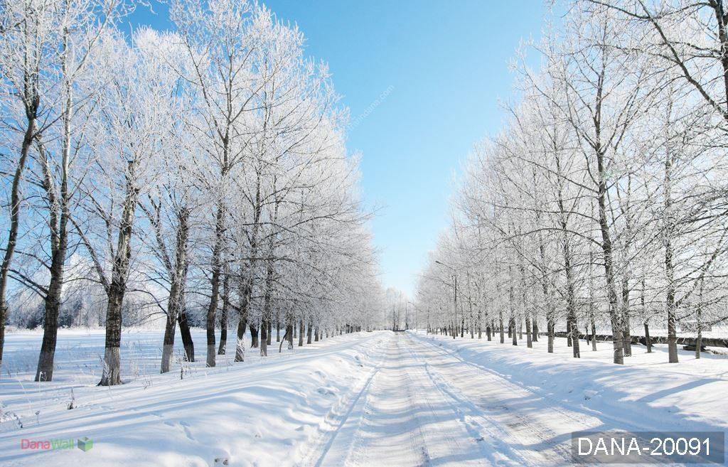 tranh 3d cảnh mùa đông