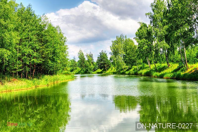 tranh 3d thiên nhiên